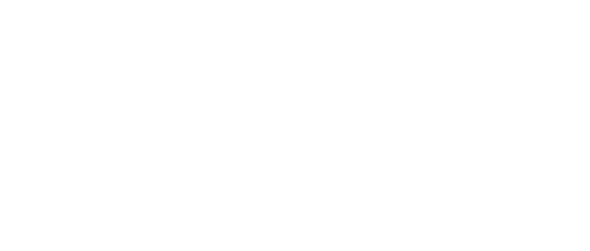 Lico Händler