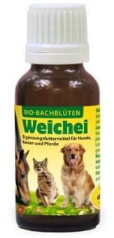 Bio-Bachblüten Weichei, 20ml