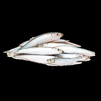 Fisch am Stück, gefroren 500g